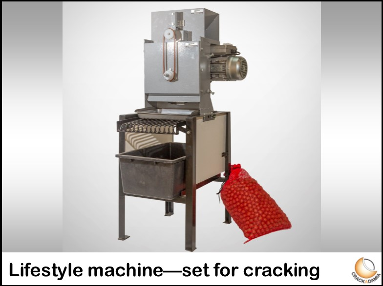 Lifestyle machine - set for cracking